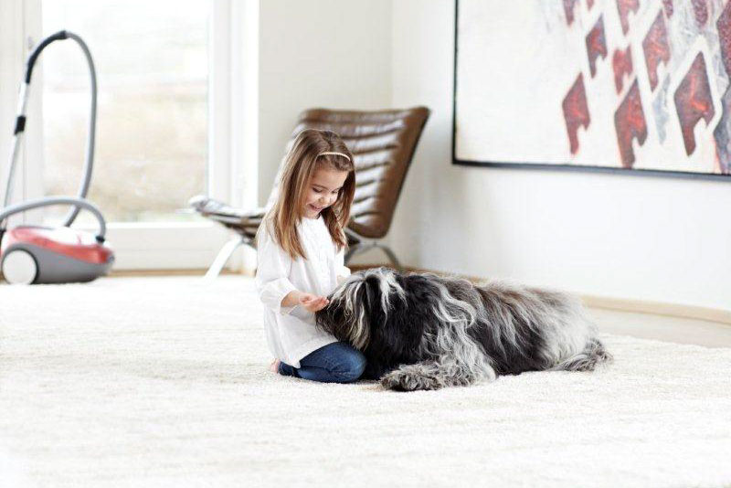 aspiradores-para-alergicos-a-las-mascotas